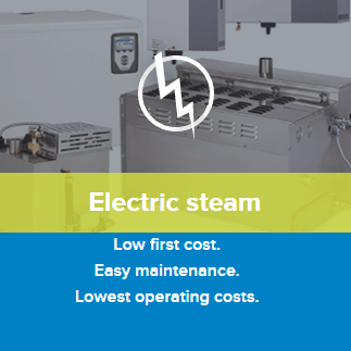 dristeem electric steam