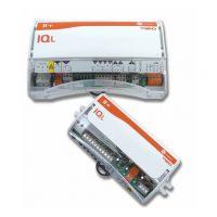 IQL11+/WT4/230