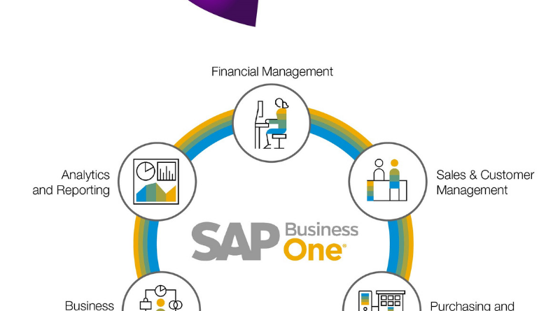 Sap business one and ibc